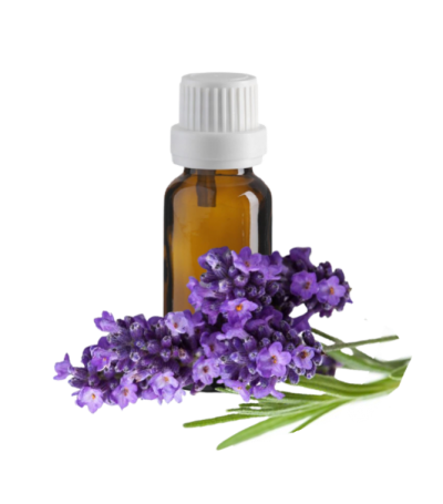 eo lavender 1