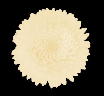 flor difusora 1
